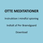 Otte guidede meditationer foside