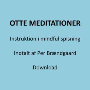 Otte guidede meditationer foside