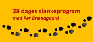 slankegruppe-banner