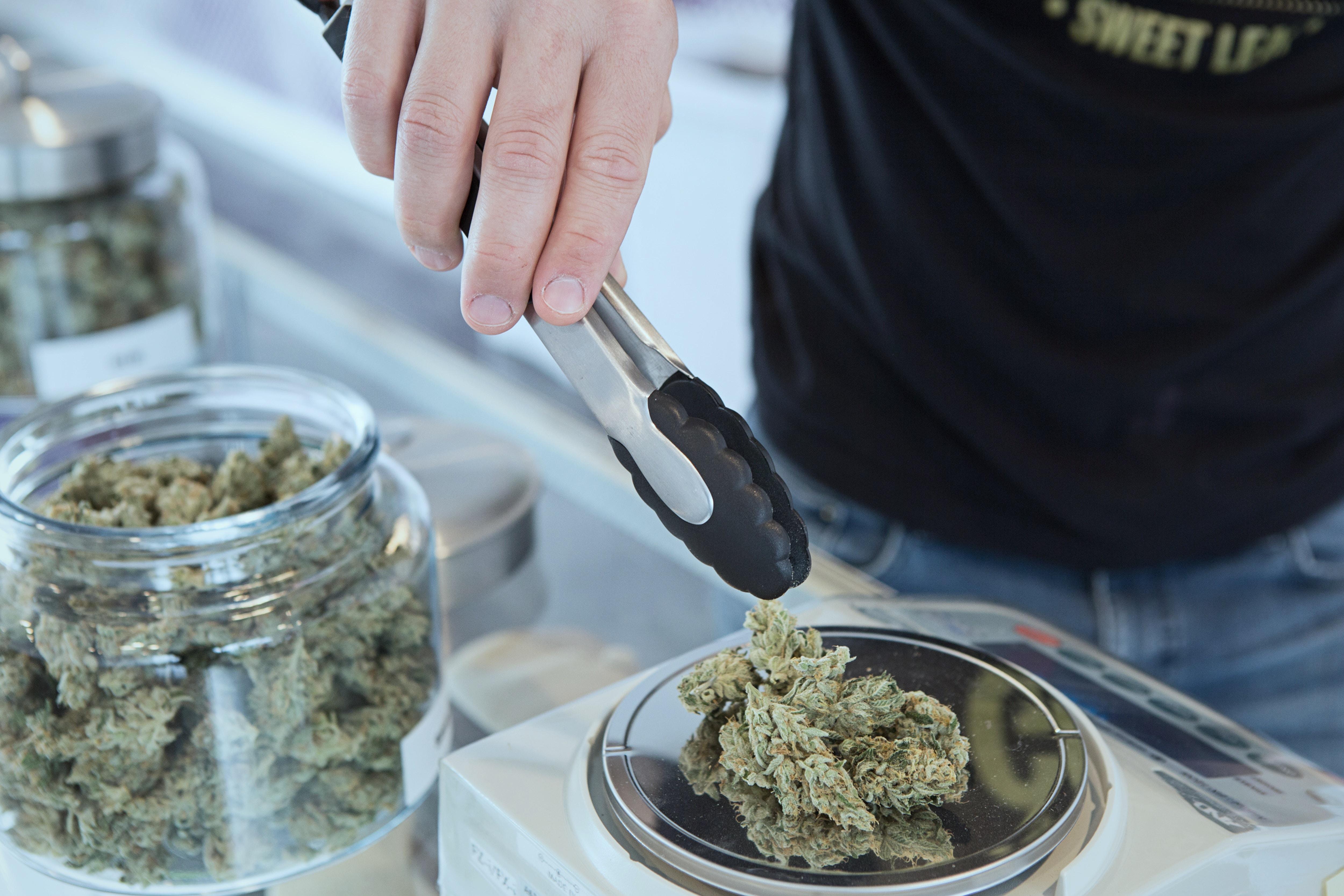 Vælg cannabis med mindre THC og mere CBD