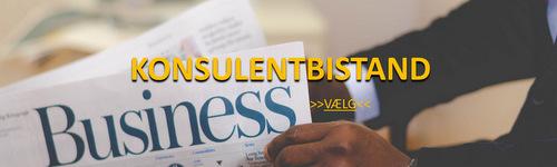 Konsulentbistand og rådgivning til virksomheder og organisationer