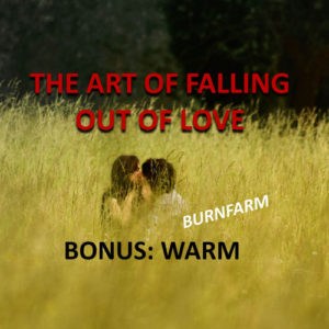The Art of Falling Out of Love single song